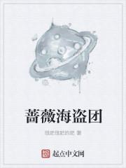 蔷薇海盗团最新章节